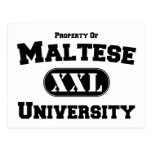 Property of Maltese University Post Card