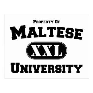 Property of Maltese University Postcard