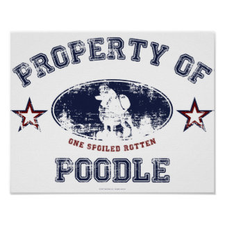Property of Poodle Poster