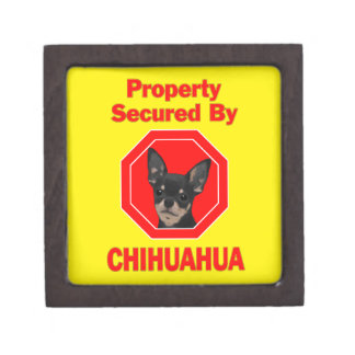 Property Secured by Chihuahua Gift Box