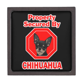 Property Secured by Chihuahua Keepsake Box