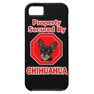 Propiedad asegurada por la chihuahua funda para iPhone SE/5/5s