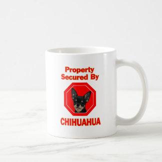 Propiedad asegurada por la chihuahua taza