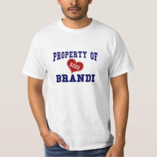 Propiedad de Brandi Camisas