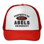 Propiedad de la universidad de Abels Gorros