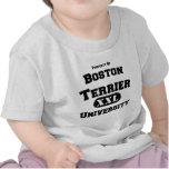 Propiedad de la universidad de Boston Terrier Camiseta