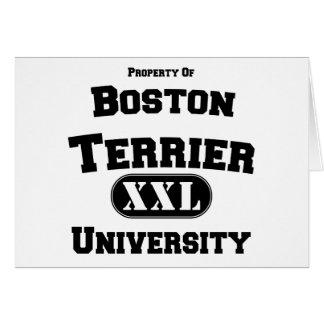 Propiedad de la universidad de Boston Terrier Tarjeta De Felicitación