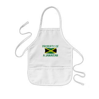 Propiedad de un jamaicano delantales