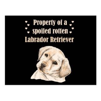 Propiedad de un Labrador putrefacto estropeado Postal