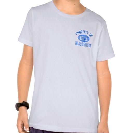 Propiedad del camisetas de los niños de Hashem Playera