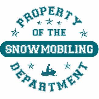 Propiedad del departamento Snowmobiling Esculturas Fotograficas