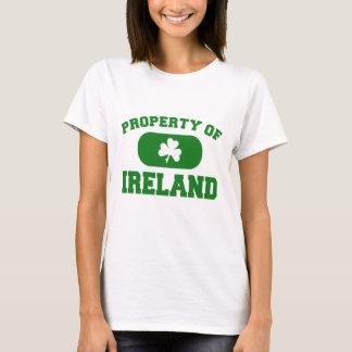 Propiedad del diseño de Irlanda Playera