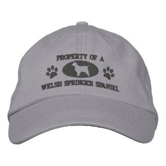 Propiedad del gorra bordado del perro de aguas de  gorra de beisbol