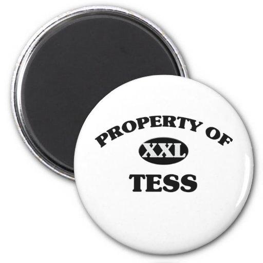 Propiedad del TESS Imán Para Frigorifico