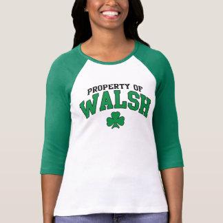 Propiedad linda de la camiseta del irlandés de