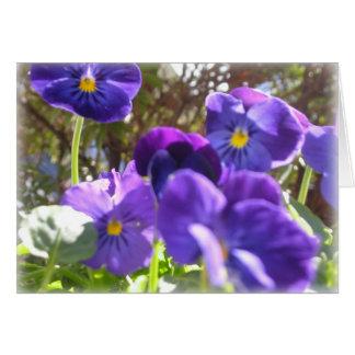 Prosa púrpura tarjeta de felicitación