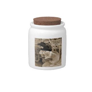 Proscritos de la ardilla en el viejo oeste jarra para caramelo