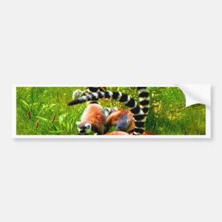 Prosimians atados anillo del lemur de la alegría pegatina para auto