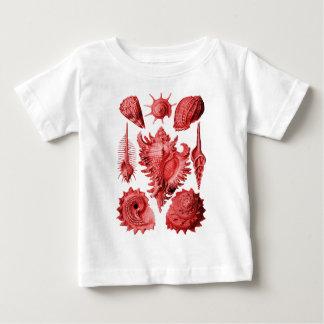 Prosobranchia Shirts