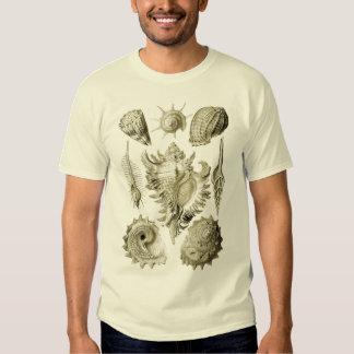 Prosobranchia T Shirt