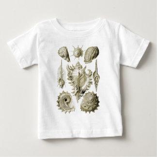Prosobranchia T-shirt