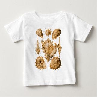Prosobranchia T Shirts