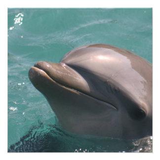 Protagonizar invitaciones de un delfín anuncio