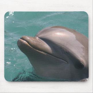 Protagonizar un cojín de ratón del delfín tapete de ratón