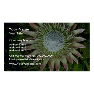 Protea Bloom - Maui flowers Business Card Template