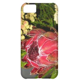 Protea Bouquet iPhone 5C Covers