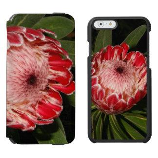 Protea iPhone 6/6s Wallet Case