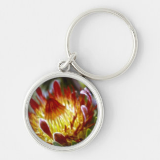 protea king Silver-Colored round keychain