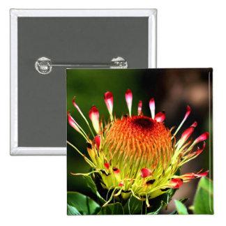 Protea Pin Cuadrada 5 Cm