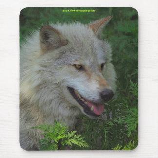 Protección alfa Mousepad de la fauna del lobo gris Tapetes De Raton