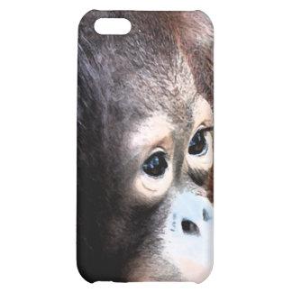 Protección de la fauna del orangután