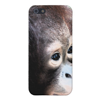 Protección de la fauna del orangután iPhone 5 fundas