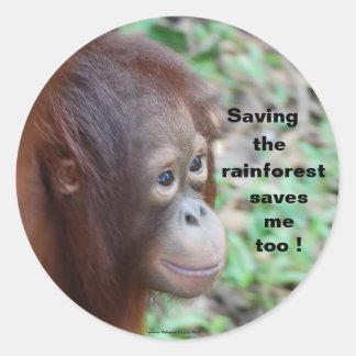 Protección de la fauna Orangutanes y selva Etiqueta Redonda