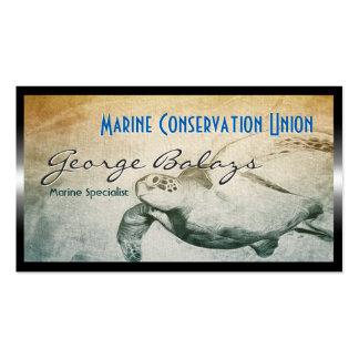 Protección de la tortuga de mar verde/del recurso tarjetas de visita
