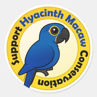 Protección del Macaw del jacinto de la ayuda Pegatina Redonda