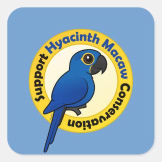 Protección del Macaw del jacinto de la ayuda Calcomanías Cuadradass Personalizadas