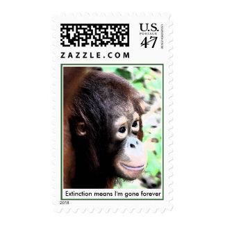 Protección en peligro orangután de la especie estampilla