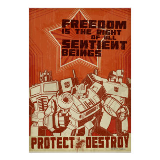 Protect/Destroy Posters