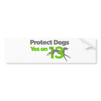 Protect Dogs - Vote Yes on 13 bumper sticker