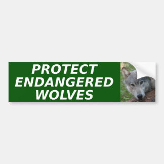 Protect Endangered Wolves bumper sticker Car Bumper Sticker