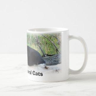 Protect Feral Cats Coffee Mug