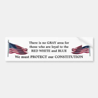 Protect our Constitution bumper sticker Car Bumper Sticker