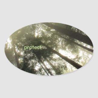 Protect Our Forests Oval Sticker