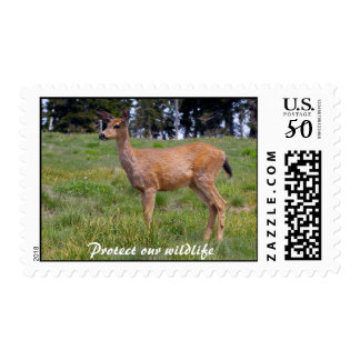 Protect our wildlife postage