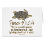 Protect Sea Turtles Card