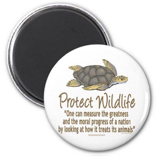 Protect Sea Turtles Magnet